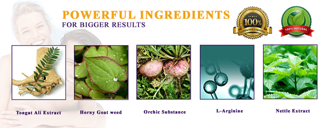 nitridex ingredients