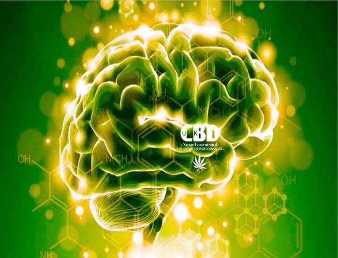 cbd oil shops