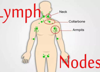 Natural Remedies For Your Lymphatic Nodes