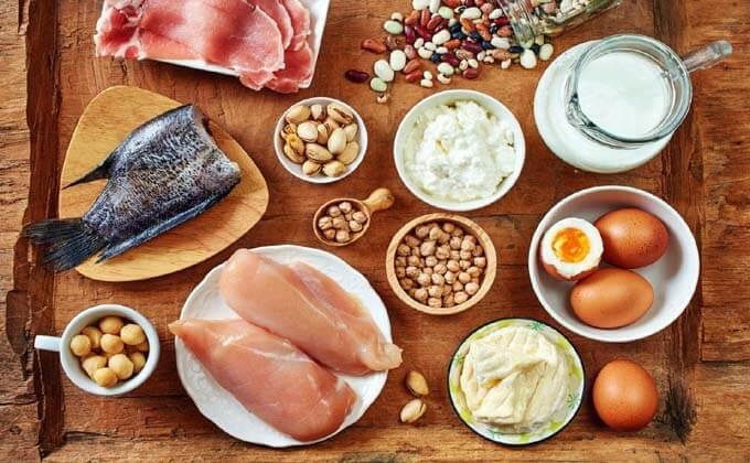 protein rich diet